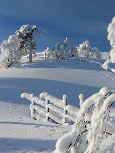 The blue shadows across the white snow is so beautiful! Foto Picture, Beautiful Winter Scenes, Winter Schnee, Fotografia Macro, Snow Pictures, Winter Love, Winter White, Winter Magic, Winter Photos
