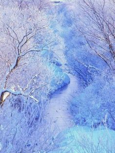 Frozen Nature Jyozankei - Hokkaido - Japan A winter wonderland in central park Bird in snow All Nature, Amazing Nature, Beautiful World, Beautiful Places, Winter Magic, Winter Scenery, Snow Scenes, Winter Beauty, Japan Travel