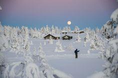 Tønsbergs Blad - Sesongprognose: Slik blir vinteren