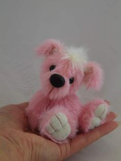 Candy, my little pink pup!