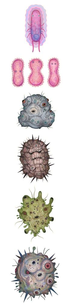 A series of bacteria characters created for an animated TV commercial by a Ukrainian creative advertisement agency FEDORIV.