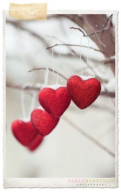You were always meant to have my heart. | Flickr - Photo Sharing!