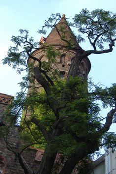 Brugge Belgium.... Tower to overlook oncoming armies...