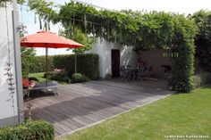 Sichtschutz Garten Ideen Modern Pergola & Patio with Glyzinie by Droll & Lauenstein at Germany
