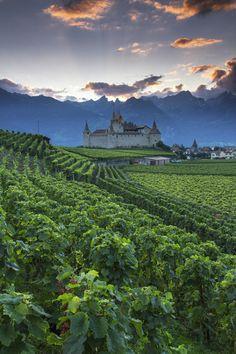 Chateau D'Aigle, Switzerland (by Patrick Bellon)
