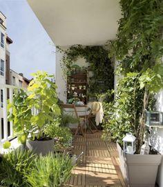 Déco terrasse avec sol en bois et plantes vertes