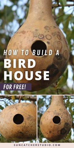 How To Make a Recycled Birdhouse for your Home for Free! With these easy step-by-step directions, you can build an amazing nesting box from a repurposed gourd on a budget. A fun outdoor project for kids and adults alike. This beautiful natural birdhouse will attract a variety of wild birds to your home and garden. You can leave the exterior natural or paint it. Let your creative crafting juices flow and design this nesting box however you'd like! Diy Projects For Beginners, Cool Diy Projects, Projects For Kids, Wood Projects, Bird Feeder Plans, Bird Feeders, Backyard Projects, Outdoor Projects, Bird House Plans