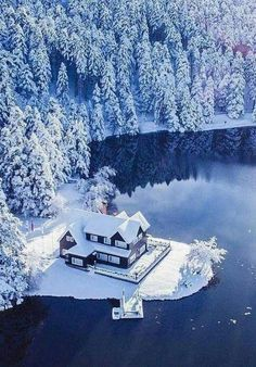 Winter Wonderlands has members. This group is for posting pictures of gorgeous winter scenery. Winter Szenen, Winter Magic, Winter Trees, Winter Wonderland, Snow Scenes, Winter Pictures, Winter Beauty, Winter Landscape, Winter Photography