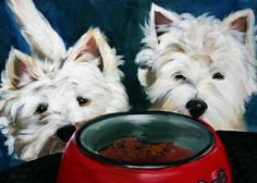 Mary Sparrow Smith from Hanging the Moon – dog art, pets, portrait, paintings, gift ideas, home decor. Westie West Highland Terrier https://www.etsy.com/listing/101513956/print-westie-west-highland-terrier-dog