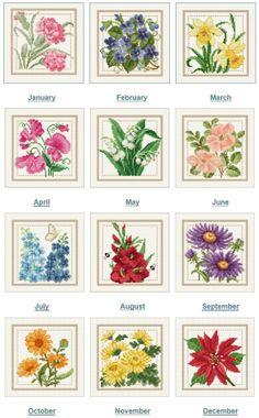 Monthly Flowers - Ellen Maurer-Stroh