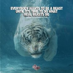 Inspirational Quotes are best served up in picture form. Here we have 200 of the most epic success quotes, wealth quotes, success habits and quotes about success, so you can be inspired. Inspirational Quotes About Success, Inspirational Quotes Pictures, Motivational Quotes For Life, True Quotes, Stress Relief Quotes, Stress Quotes, Rich Quotes, Wealth Quotes, Good Motivation