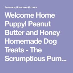 Welcome Home Puppy! Peanut Butter and Honey Homemade Dog Treats - The Scrumptious Pumpkin