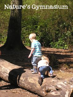 Natures Gymnasium - the natural gym of the woods with kids, balance, stamina, climbing and fitness all within a free environment and open air