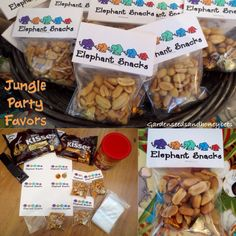 Jungle Baby Shower Favors