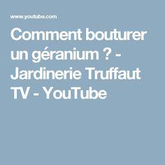 Comment bouturer un géranium ? - Jardinerie Truffaut TV - YouTube
