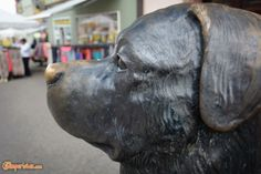 Rottweil, la città dei cani | Camperistas.com