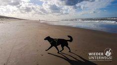 """""""Leine los!"""" in Holland - Mit Hund am Strand von Noordwijk. - Wiederunterwegs.com"""