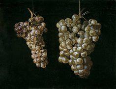 """""""Bodegón con dos racimos de uvas"""", Juan Fernández el Labrador. Óleo sobre lienzo, 29 x 38 cm  c. 1629 - 1630  Madrid, Museo Nacional del Prado"""