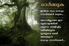 1222 Best Malayalam Quotes Images In 2019 Malayalam Quotes Best