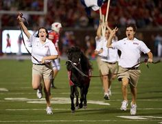 SMU Southern Methodist University Mustangs - SMU's miniature stallion mascot, named Peruna, runs across the field after a football game touchdown.