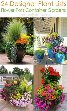24 designer plant lists for beautiful container gardens & colorful mixed flower pots combinations: great patio planting ideas & backyard landscape designs! – A Piece of Rainbow gardening flowers patio 24 Stunning Container Garden Planting Ideas Full Sun Container Plants, Container Gardening Vegetables, Container Flowers, Planting Vegetables, Growing Vegetables, Plants For Containers, Vegetable Gardening, Succulent Containers, Garden Container