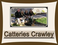 For more detail once visit at:  http://www.hammerpondkennels.co.uk/nav/cattery