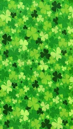 63 Ideas For Wall Paper Phone Spring St Patrick Wallpaper Iphone Cute, Cellphone Wallpaper, Of Wallpaper, Cute Wallpapers, Wallpaper Backgrounds, Boxing Day, Macbook Desktop Backgrounds, Fete Saint Patrick, St Patricks Day Wallpaper