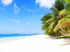 Exclusive Villas and Hotels auf on Praslin (Seychellen). Book your dream holidays on Praslin (Seychellen) at the seychelles expert! Praslin Seychelles, Beach Villa, Beaches In The World, Long Beach, Island, Spaces, Holiday, Travel, Outdoor