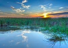 Sunrise at Horicon Marsh by Digidave via Flickr.com