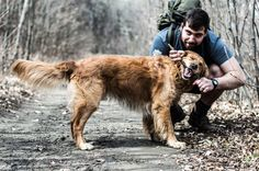 Let's help them smile - The dog in the woods is smiling
