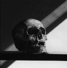 ロバート・メイプルソープの画像:* Unknown Life