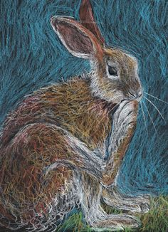 Hare, chalkboard drawing