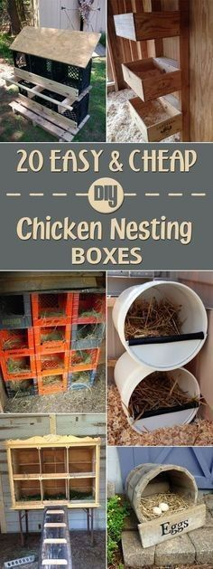 Chicken Coop - 20 Easy and Cheap DIY Chicken Nesting Boxes … Building a chicken coop does not have to be tricky nor does it have to set you back a ton of scratch. Portable Chicken Coop, Backyard Chicken Coops, Chicken Coop Plans, Building A Chicken Coop, Diy Chicken Coop, Chickens Backyard, Chicken Tractors, Simple Chicken Coop, Chicken Coop Pallets