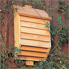 Build a Bat House! Bats are experiencing a serious decline due to habitat loss and to the excessive use of insecticide. One way to help is to provide bat houses on your property. Don't forget, each bat will eat thousands of mosquitoes a night. Outdoor Projects, Garden Projects, Bat House Plans, Bat Box Plans, Outdoor Fun, Outdoor Decor, The Ranch, Bird Houses, Dog Houses
