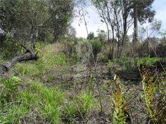 Terreno à venda, Centro, Ibiúna - R$ 50.000, 1125 m2 - ID: 2921642074 - Imovelweb