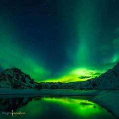 Have you always wanted to see Alaska's amazing Northern Lights?  Our travel incentives can send your customers cruising in Alaska or help them to save on hotels with our hotel cards in this beautiful state! . . . . #Alaska #northernlights #snow #nightsky #bucketlist #beautiful #scenery #inspiration #travelincentives #hotelcards #cruise #travel #adventure #vacation #happycustomers #smile #relax #enjoy #sales #marketing #reviews #leads #homerenovation #construction #realestate #solar #plumbing…