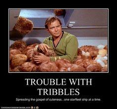 Tribbles...bahaha. Star Trek humor at its finest
