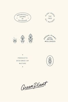 Green Plant Wellness Brand and Packaging Design by Viola HIll Studio branding Brand Identity Design, Graphic Design Branding, Icon Design, Web Design, Brand Design, Modern Graphic Design, Layout Design, Graphic Design Posters, Typography Logo