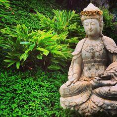 Buddha. #Kauai, #Hawaii