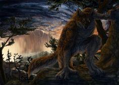 Werewolf - Fantasy & Abstract Background Wallpapers on Desktop Nexus (Image 1778045)