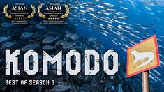 Komodo Island, Whale Watching, Underwater Photography, Season 3, Cinematography, Short Film, The Dreamers, Awards, Water Photography
