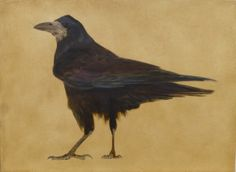 Standing Rook. Oil on board. by Camilla Clutterbuck www.camillaclutterbuck.co.uk