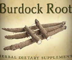 All Natural BURDOCK ROOT Tincture Liquid Herbal Extract Tonic for Normal Liver & Lymph Function Health Single Herb Nutritional Supplement