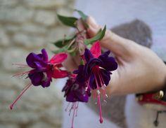 FLOWER IN MY HAND