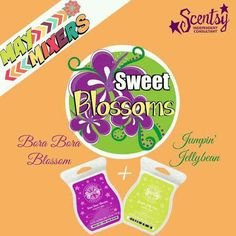 www.randiogden.scentsy.us