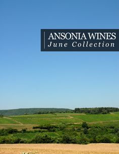 Our June Collection has just been released. Six summer wines for $96.
