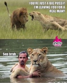 Funny pictures about Sup bruh. Oh, and cool pics about Sup bruh. Also, Sup bruh photos. Funny Animal Pictures, Cute Funny Animals, Funny Images, Funny Photos, Crazy Funny Memes, Funny Jokes, Hilarious, Memes Humor, Funny Lion
