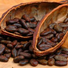 If I must eat beans I will eat cocoa beans!