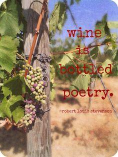 Sangiovese Grapes. Cantine Leonardo Da Vinci, Vinci Italy. Photo taken by Cathi Iannone of The Brooklyn Ragazza.  #DaVinciWine