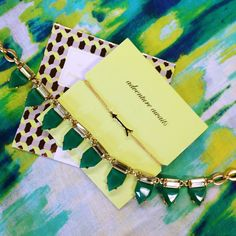 The green gift package is perfect for anyone on your list | Stella & Dot